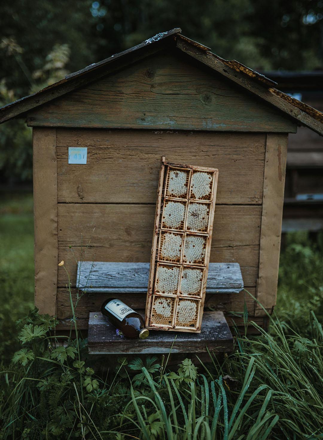 Kombucha vitality drink honeycomb by bee beehive